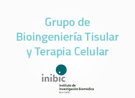 grupo-de-bioingenieria